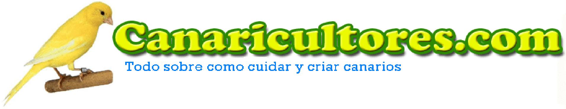 canaricultores.com